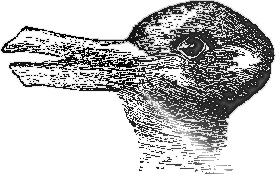 Duck or Rabbit, Human Vision